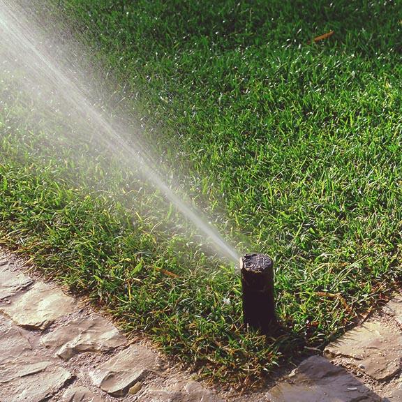 sprinkler system installation, New Installation