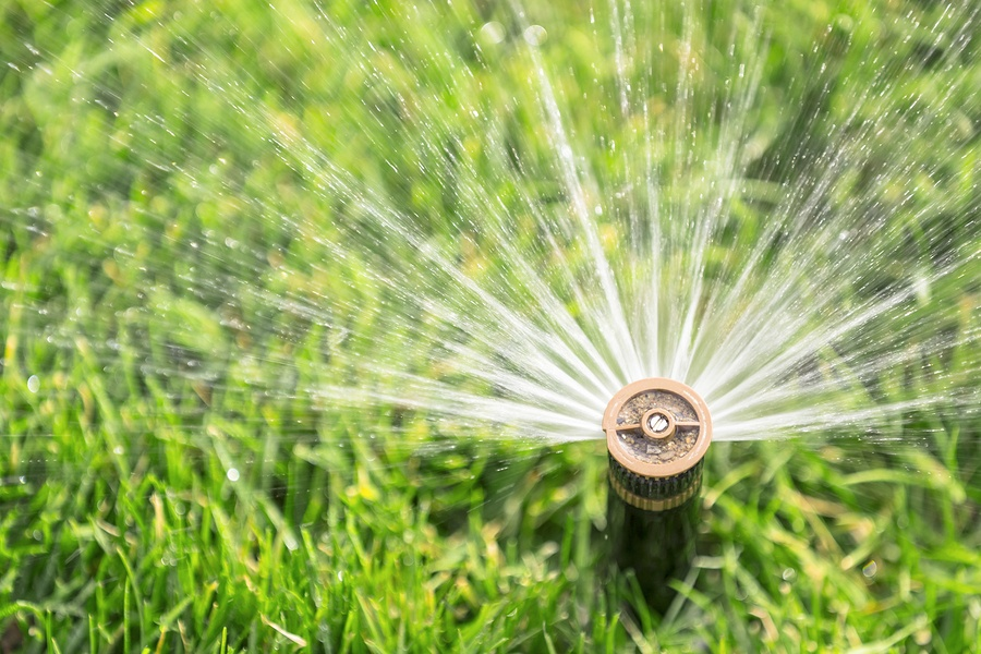 things to know before purchasing a Sprinkler System, What You Need to Know Before Purchasing a Sprinkler System