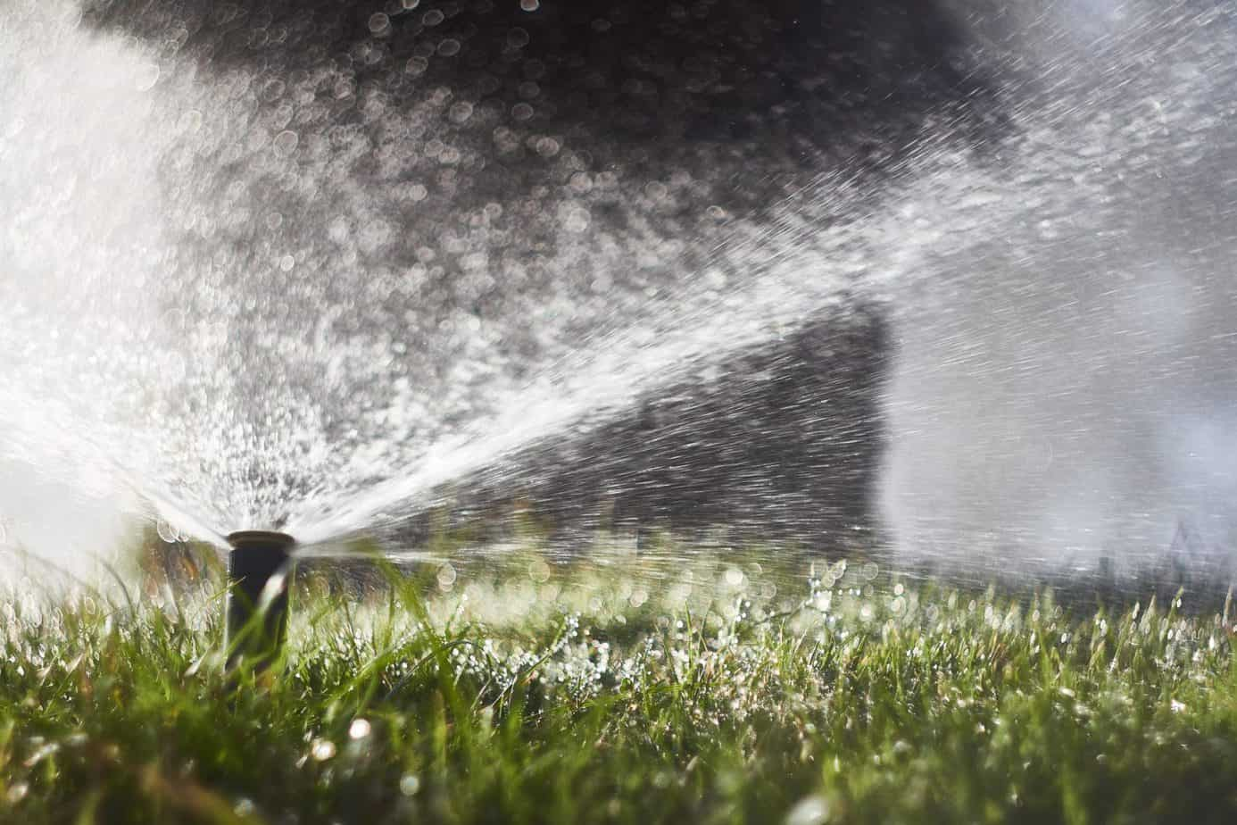 sprinkler system maintenance - sprinkler head watering lawn