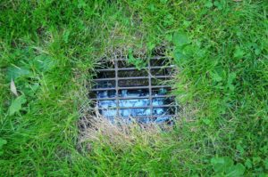 landscape drainage, How to Identify Landscape Drainage Issues